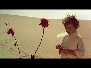 """Адажио из балета """"Маленький принц"""" Евгения Глебова. Хор сотрудников Бгам"""
