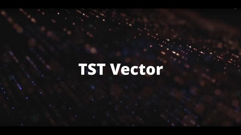 TST Vector Один день из жизни трейдера