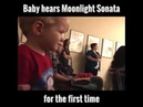 Baby hears Moonlight Sonata for the first time, The purest reaction to Beethoven