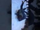 бійка в першій школі скандальне відео