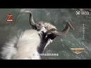 Патрулирование на яках государственной границы КНР на Памире