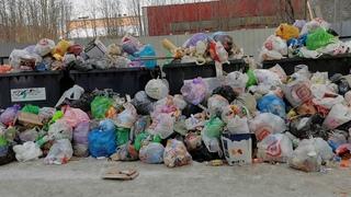 Мурманский двор на проспекте Кирова утопает в мусоре