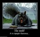Фотоальбом Руслана Нарницкого