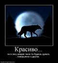 Персональный фотоальбом Алексея Картышова