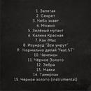 Тимур Кузьминых фотография #9