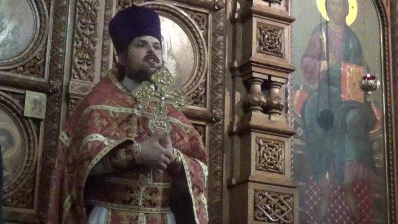 Проповедь иерея Сергия Чекоданова. Мы должны свидетельствовать о свете Христовом
