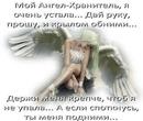 Фотоальбом Елены Котельниковой