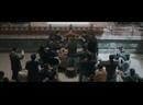 21/49 Зимняя бегония Winter Begonia 鬓边不是海棠红 рус.саб