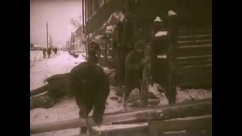 Военная хроника Тихвин 1941 год
