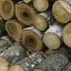 Валка деревьев частями в Ленобласти цена
