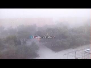 """Соляная буря в Нукусе. Прямо сейчас. Арал передаёт свой очередной """"привет""""!  https://t.m"""