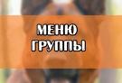 МЕНЮ/ПУТЕВОДИТЕЛЬ