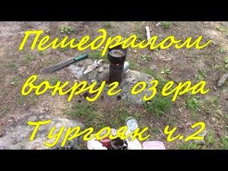 Как я пешедралом вокруг озера Тургояк ходил и диких уток с руки кормил. ч.2