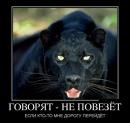 Фотоальбом Валерия Шлыкова