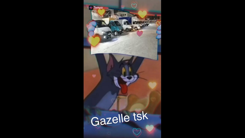 Gazelle tsk 2