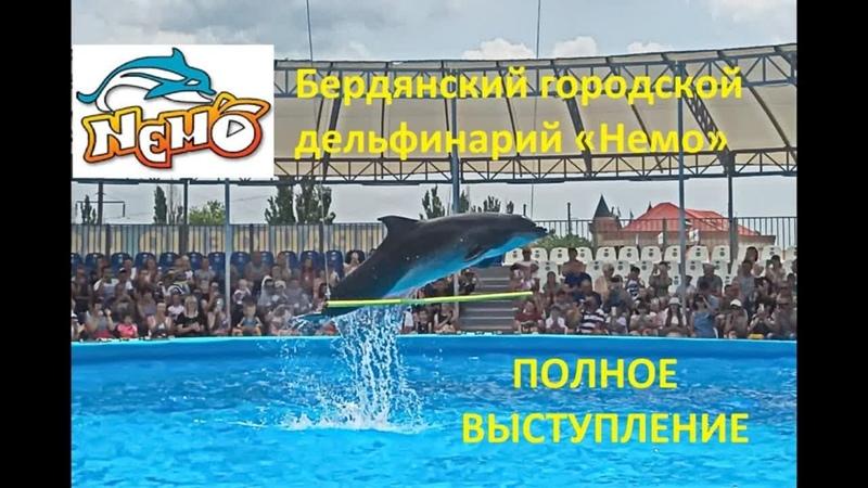 Прыгающие Дельфины Полное выступление Бердянский дельфинарий Немо
