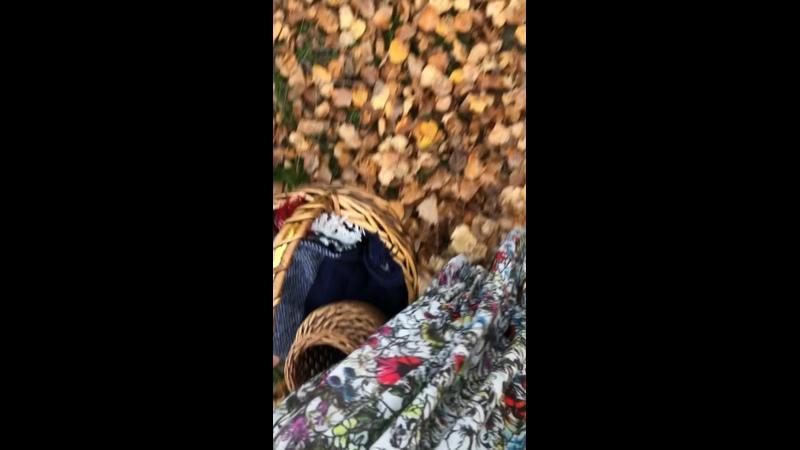 Видео от Евы Асабаевой
