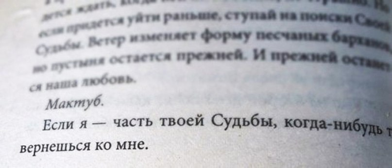 фото из альбома Пети Садского №3