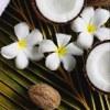 Натуральное масло кокоса, миндаля, какао, Ши
