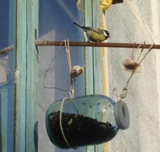 как сделать кормушку для зимующих птиц,