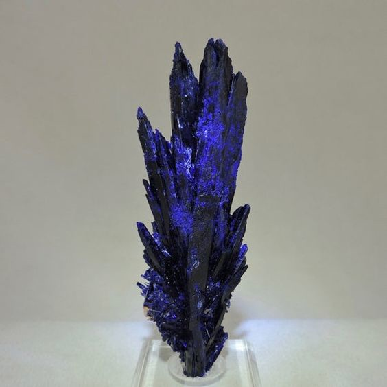 Azurite Crystals, Locality: Kerrouchen, Morocco Sze: 4 x 1.25 x 1 Weight: 82 grams Type:Small Cabinet Provenance