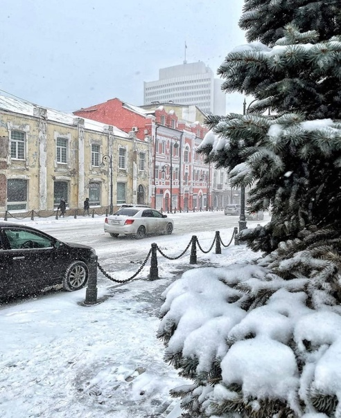 Гаражане, или 50 выдуманных фактов о Владивостоке
