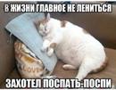 Андриенко Елена      3