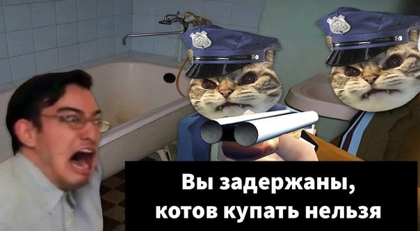 В Японии мужика арестовали за мытье кота. Он запос...