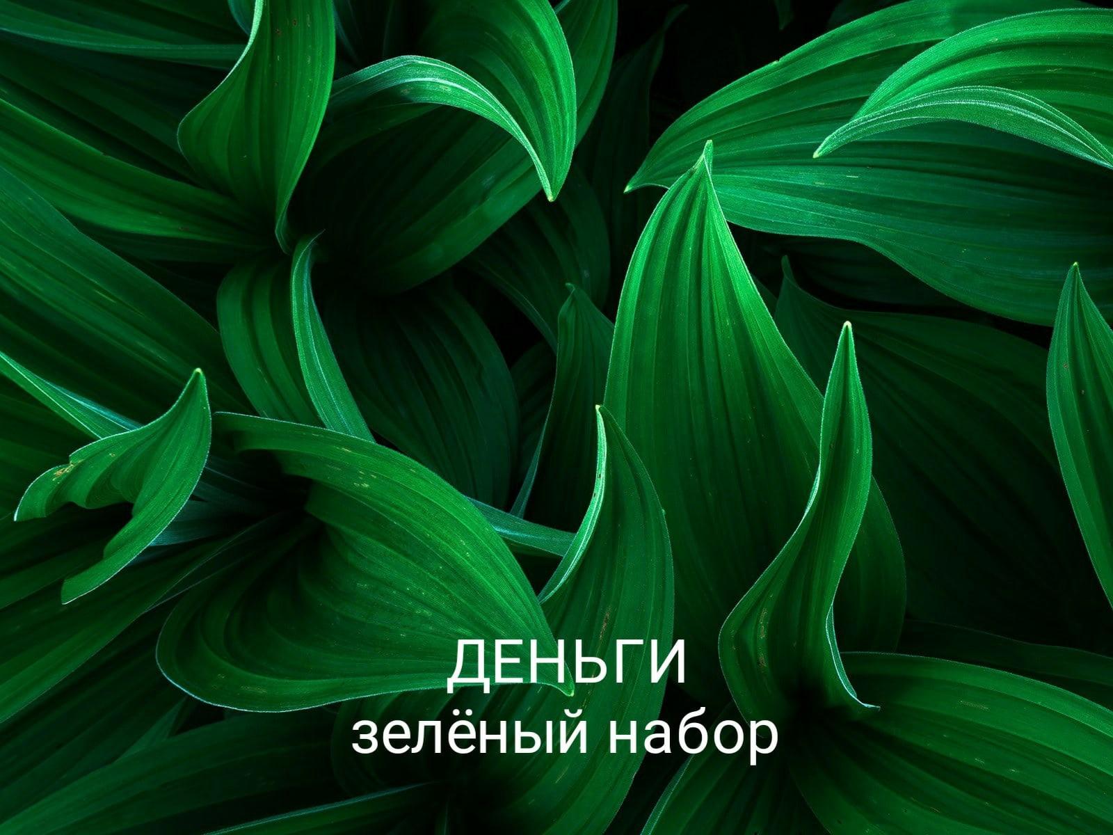 Программы от Елены Руденко - Страница 4 C3-IZ3iSLF4