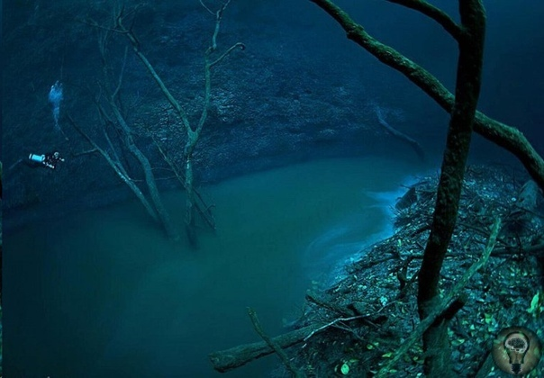 Ценот Анхелита подводная река Юкатана Прямо на дне Ценота Анхелита на полуострове Юкатан в Мексике находится невероятная подземная река. Это необычайно красивое природное явление протекает