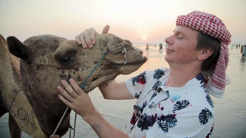 Прогулки на верблюдах и бои кобры с мангустом Мир наизнанку Пакистан