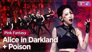 [Simply K-Pop CON-TOUR] Pink Fantasy (핑크판타지) - Alice in Darkland + Poison (독)  _