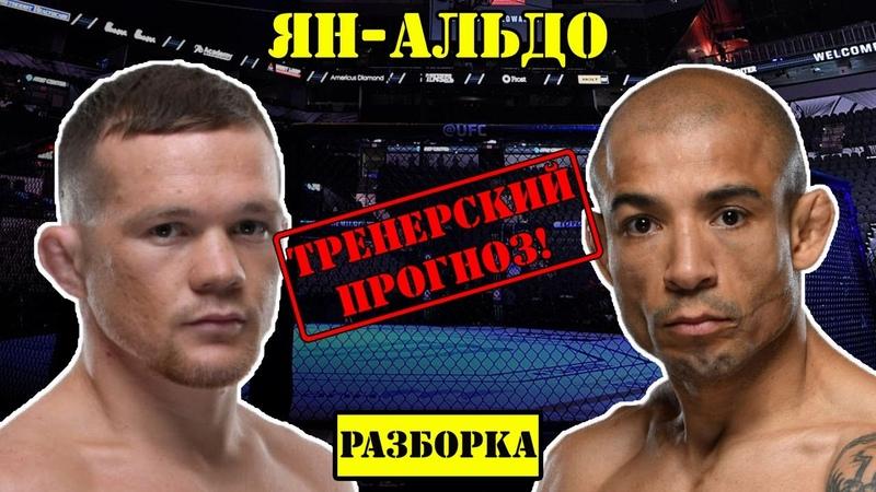 UFC 251 Петр Ян vs Жозе Альдо! Прогноз на бой Разбор боя Petr Yan - José Aldo