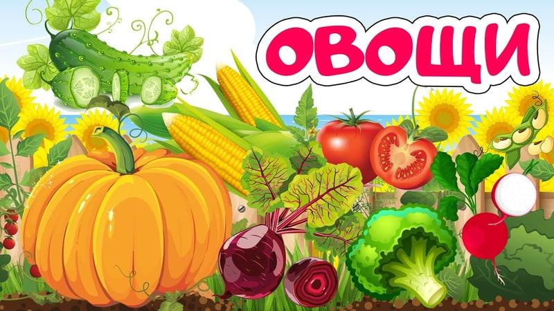 Учим овощи для детей Карточки Домана Развивающие мультики для детей мультфильмы