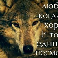 Личная фотография Олега Сухорукова