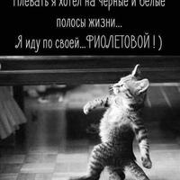 Личная фотография Николая Пуйкова