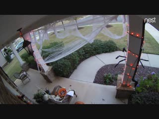 Heard you guys like trashy - watch this mom steal all of our halloween candy