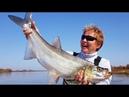 Большое рыболовное путешествие. Часть 1 Амур