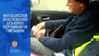 Житель Брестской области пытался дать взятку сотрудникам ГАИ Гомельщины