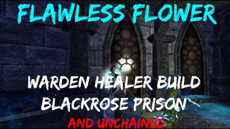 Flawless Flower PvE Warden Healer Build Blackrose Prison Unchained ESO Scalebreaker