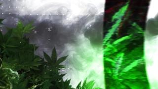 Berner & B-Real - Midnight Flights (feat. Baby Bash & Trick Trick) (Visualizer)