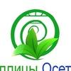 Теплицы Осетии
