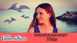 Обними Кита - Птицы (ВНИМАНИЕ: это первоапрельская версия песни)