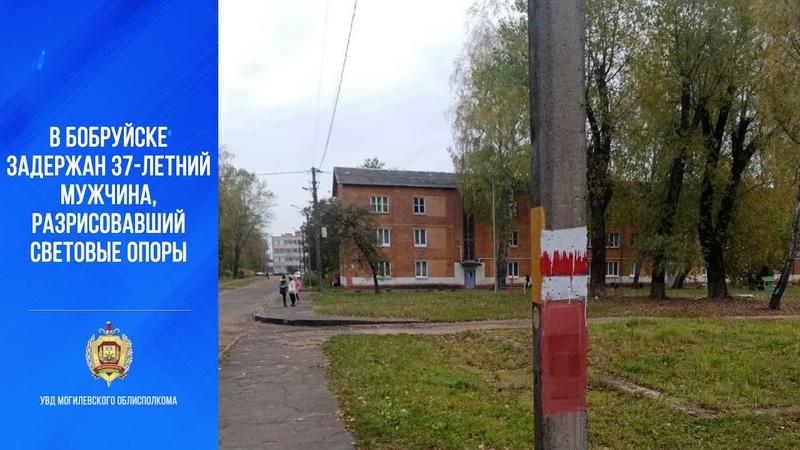 В Бобруйске задержан 37 летний местный житель разрисовавший световые опоры