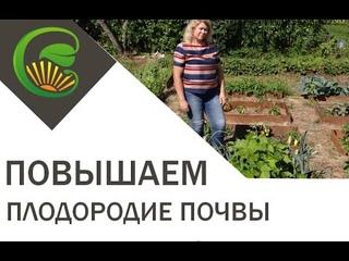 Повышаем плодородие почвы
