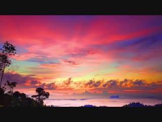 You Alone I praise - New Creation Church