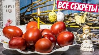 ТОЛЬКО так!!! Готовит моя МАМА! Пасхальные яйца - СИМВОЛ ПАСХИ 2021 как покрасить без химии!
