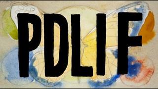 Bon Iver - PDLIF - Official Video